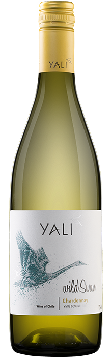 YALI Chardonnay, Sausais Baltais vīns, Čīle 13% 75cl
