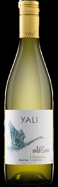 YALI Chardonnay, Dry White Wine, Chile 13% 75cl